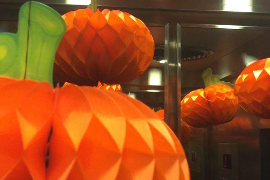 autumn pumpkin fall catalogue shopping