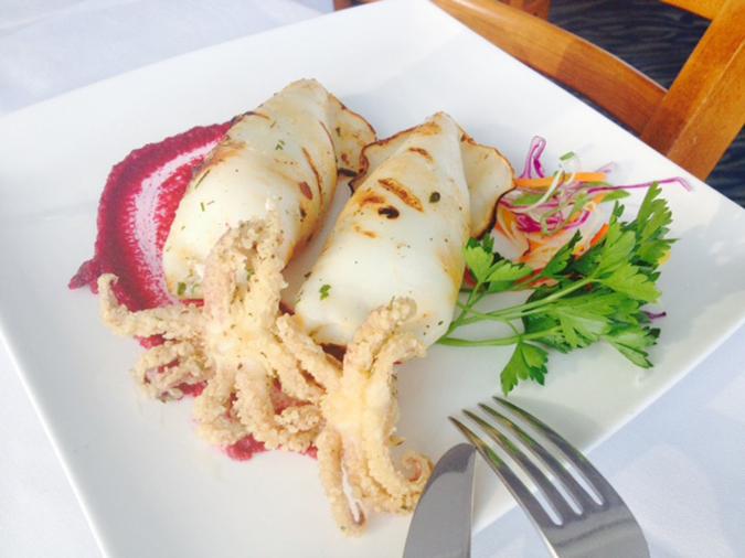 Calamari-Embed