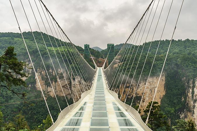 bridge embed