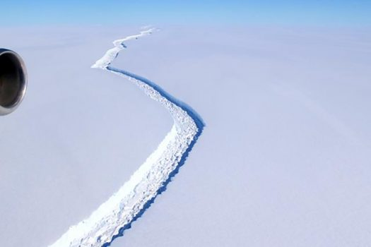 larsen ice shelf feature photo