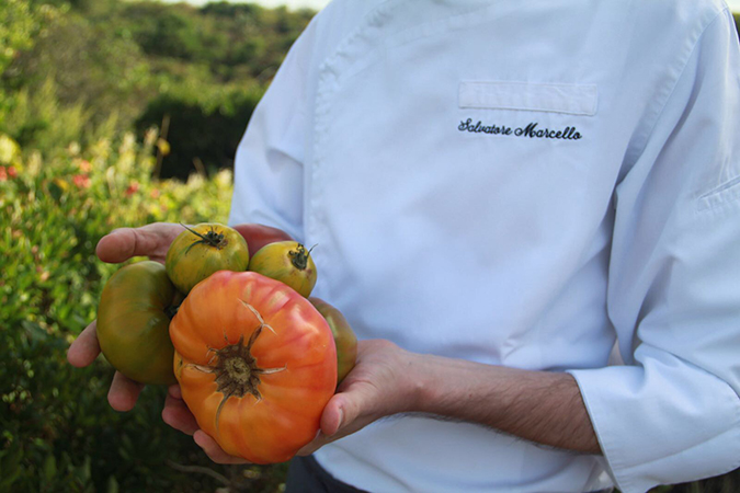 ChefMarcelloTomatoes