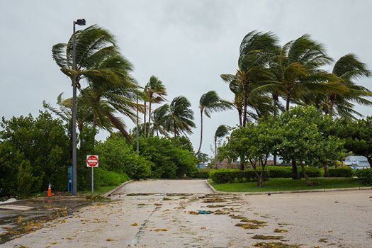 hurricane irma photo shutterstock