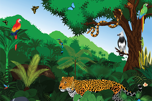 rainforest animal art shutterstock