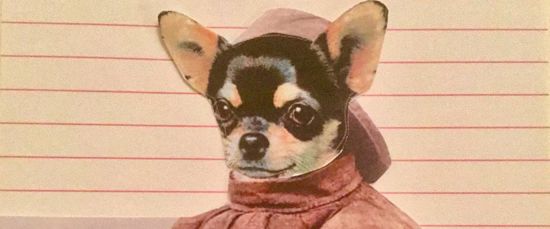 benjamin mason dogs n yaaa cover art