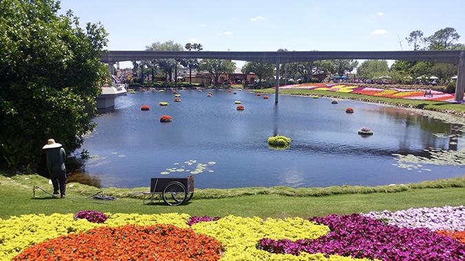 laura lavelle epcot flower and garden festival