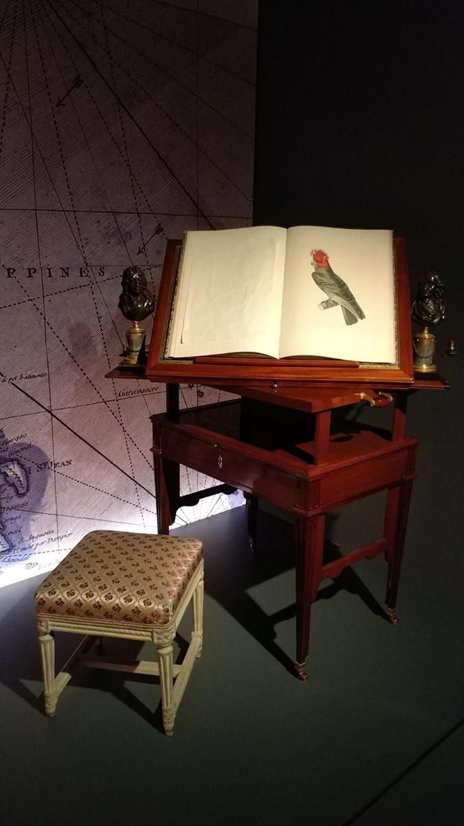 cabinet of curiosities 3 alice lonfat chu