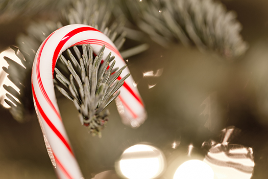 candy cane tree - Anthony Blake - shutterstock