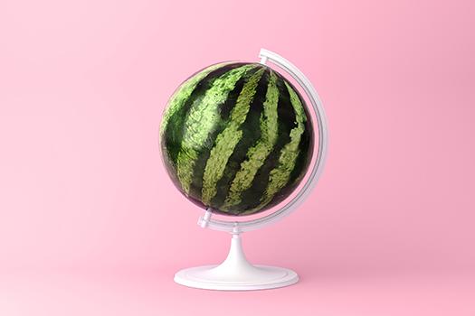 watermelon globe - small smiles - shutterstock