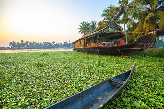 Kerala - Smarta - Shutterstock