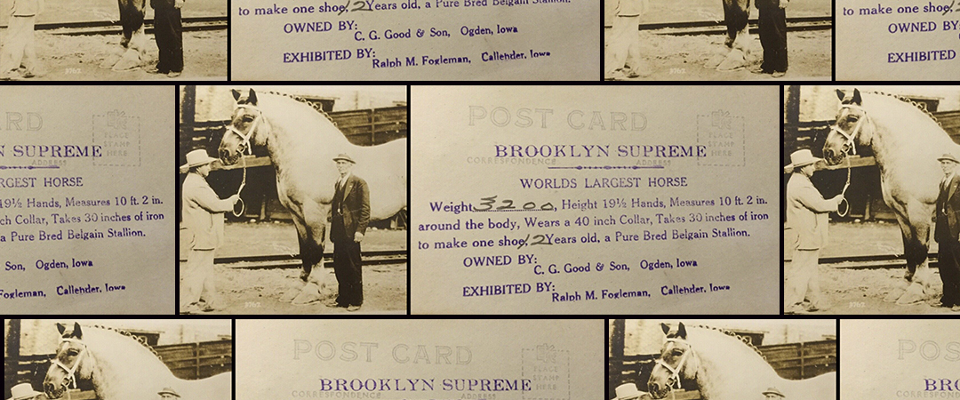 brooklyn supreme - postcard - this day in history - feature