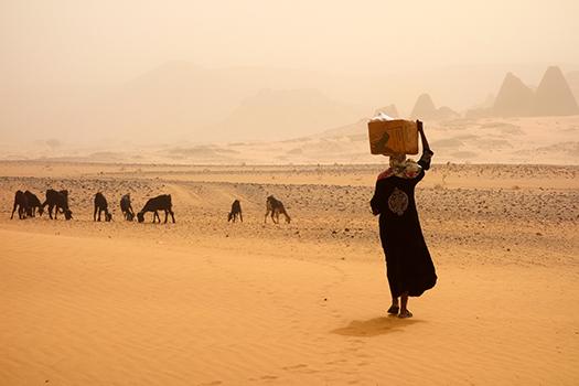 sandstorm in sudan - yiannisscheidt - Shutterstock