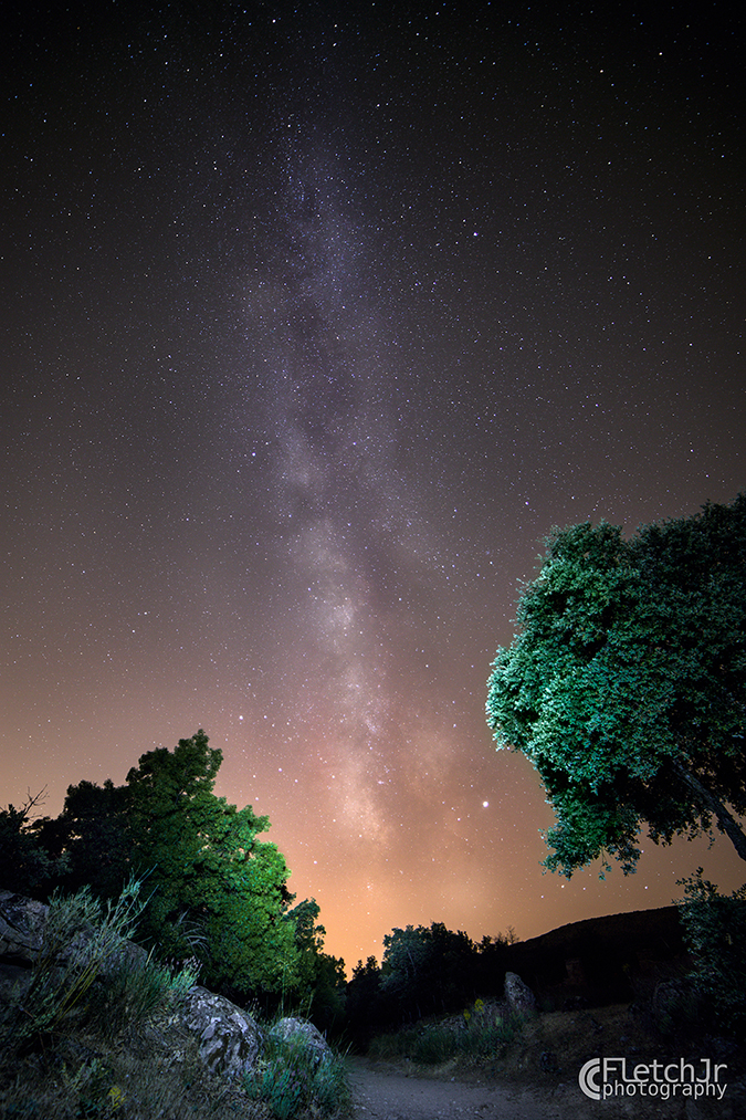 John Fletcher - Milky Way Mora WM-1952-2