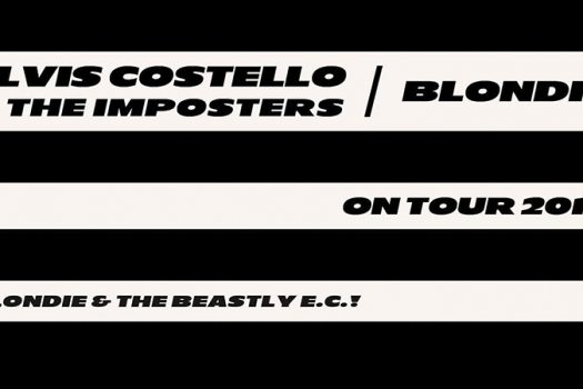elvis costello blondie review