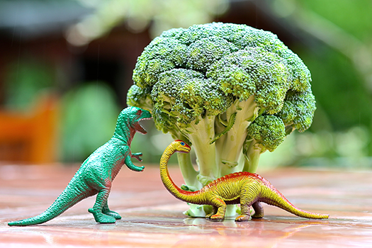 Broccoli Tree - CroMary - Shutterstock