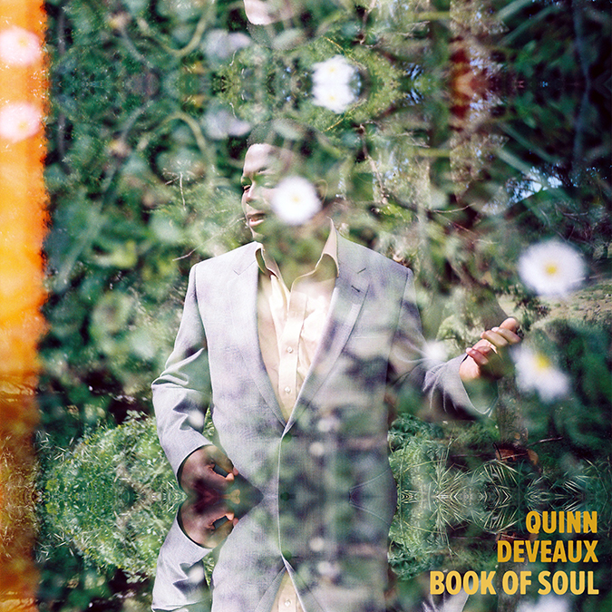 Quinn DeVeaux New Book Of Soul Cover copy