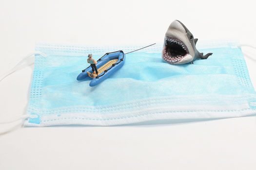 just say diversion - mask fishing shark - seaonweb - shutterstock - feature